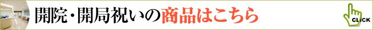 開院祝い、開局祝いの商品一覧へ 胡蝶蘭、ミディ胡蝶蘭、観葉植物などのフラワーギフト