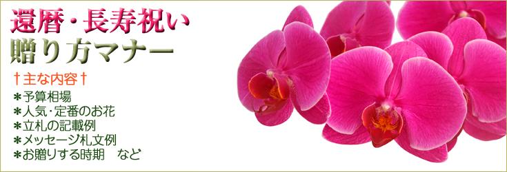 還暦などの長寿のお祝い、敬老の日のプレゼントの贈り方のマナー 胡蝶蘭、フラワー、観葉植物