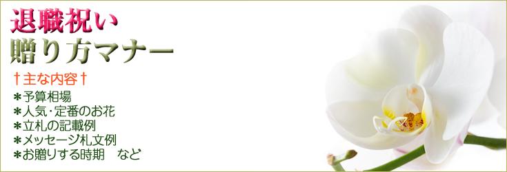退職祝いの贈り方のマナー 胡蝶蘭、フラワー、観葉植物