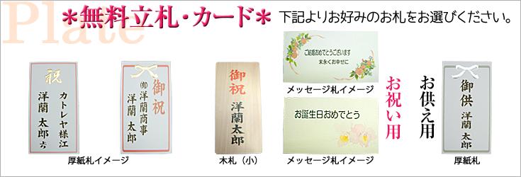 立札例 木札 厚紙札 メッセージカー札 森田洋蘭園 フラワーギフト通販ミーム