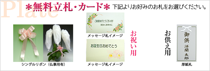 森田洋蘭園 立札(メッセージカードとリボン)