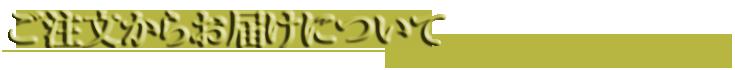 胡蝶蘭とお祝いの花専門店 [フラワーギフト通販ミーム]のご注文からお届けについて